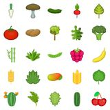 Salad icons set, cartoon style. Salad icons set. Cartoon set of 25 salad vector icons for web isolated on white background Royalty Free Stock Images