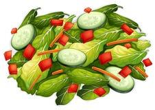 Salad. Illustration of a closeup salad Royalty Free Stock Photography