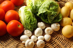 Salad ingredients Royalty Free Stock Photos
