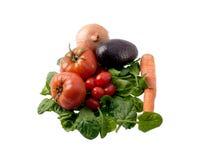 Salad ingredients Royalty Free Stock Images