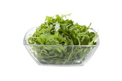 Salad isolated Stock Photography