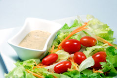 Salad with Japanese dressing (sesami sauce). Mix vegetable salad with Japanese dressing (sesami sauce stock images