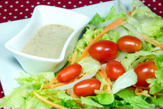 Salad with Japanese dressing (sesami sauce). Mix vegetable salad with Japanese dressing (sesami sauce stock photography