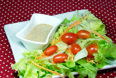 Salad with Japanese dressing (sesami sauce). Mix vegetable salad with Japanese dressing (sesami sauce stock photos