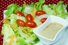 Salad with Japanese dressing (sesami sauce). Mix vegetable salad with Japanese dressing (sesami sauce Stock Images