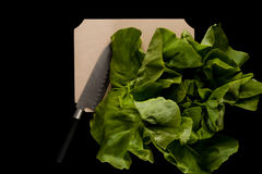 Salad with knife Royalty Free Stock Images