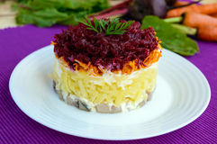 Salad with layers of cooked vegetables and salted fish (Herring under fur coat). Royalty Free Stock Photo