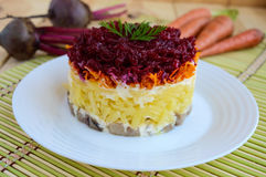 Salad with layers of cooked vegetables and salted fish (Herring under fur coat). Stock Images