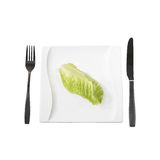 Salad leaf on plate Royalty Free Stock Photography