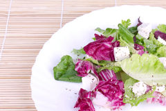 Salad of leafs and sheep cheese on plate Royalty Free Stock Images