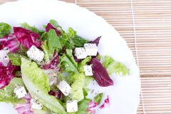 Salad with leafs and sheep cheese on plate Royalty Free Stock Image