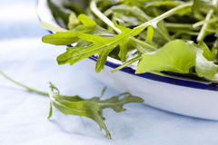 Salad Leaves Royalty Free Stock Images