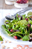 Salad leaves close-up. Italian food. Royalty Free Stock Images