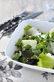 Salad leaves close-up. Royalty Free Stock Photos