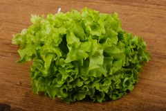 Salad leaves. Fresh green salad leaves on the wood background royalty free stock image