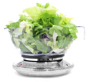 Salad leaves in a scale Royalty Free Stock Photos