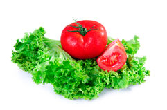 Salad leaves and tomato Stock Photos