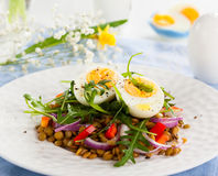 Salad with lentil and eggs Royalty Free Stock Photo