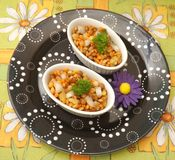Salad of lentils Royalty Free Stock Photography