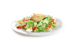 Salad with lettuce Royalty Free Stock Images