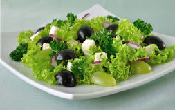Salad of lettuce with cheese and grapes Royalty Free Stock Photo