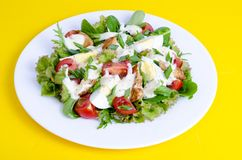 Salad of lettuce, egg, chicken pieces, mayonnaise on white plate on yellow background royalty free stock image