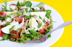 Salad of lettuce, egg, chicken pieces, mayonnaise on white plate on yellow background stock image