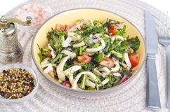 Salad of lettuce leaves, tomatoes and squid. stock images