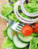 Salad with Lettuce Onion Cucumbers and Tomato Royalty Free Stock Photos