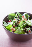 Salad with lettuce, pomegranate and walnuts Royalty Free Stock Photos