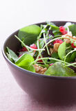 Salad with lettuce, pomegranateand walnuts Stock Photo