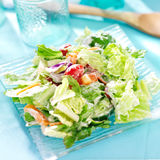 Salad with lettuce and ranch dressing Royalty Free Stock Photos