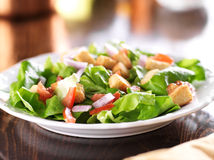 Salad with lettuce, tomato and croutons Royalty Free Stock Photos