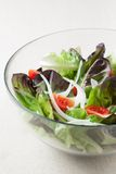Salad with lettuce, tomato and onion Royalty Free Stock Photo