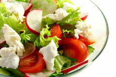 Salad of lettuce, vegetables and mozzarella. Royalty Free Stock Photography