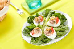 Salad of letuce egg tuna and olive Stock Photos