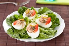 Salad of letuce egg tuna and olive Royalty Free Stock Images