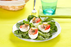 Salad of letuce egg tuna and olive Stock Image