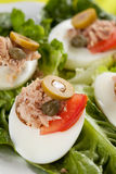 Salad of letuce egg tuna and olive Stock Photo
