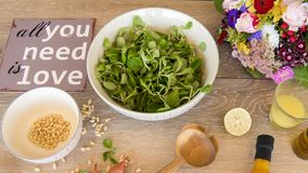 Salad love - salad with vinaigrette and pine nuts Royalty Free Stock Photos