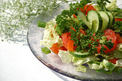 Salad for lunch. Partial of the glass plate with green salad - right angle orientation Stock Images