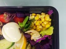 Salad. Lush healthy fresh salad on a plate Royalty Free Stock Photo