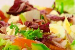 Salad Macro. Macro shot of lettuce, tomatoes, cucumber, eggs and ham salad Stock Image