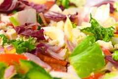 Salad Macro. Macro shot of lettuce, tomatoes, cucumber, eggs and ham salad Stock Images