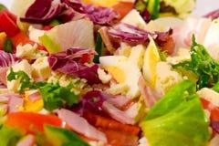 Salad Macro. Macro shot of lettuce, tomatoes, cucumber, eggs and ham salad Royalty Free Stock Photo