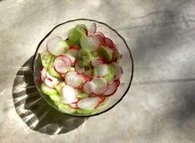 Salad made from cucumbers and radishes royalty free stock photography