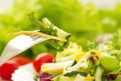 Salad made of fresh vegetables with oil Stock Photography
