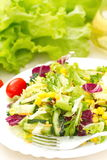 Salad made of fresh vegetables with oil Royalty Free Stock Photo