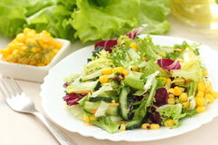 Salad made of fresh vegetables with oil Royalty Free Stock Images