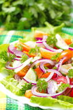 Salad made of fresh vegetables Stock Images